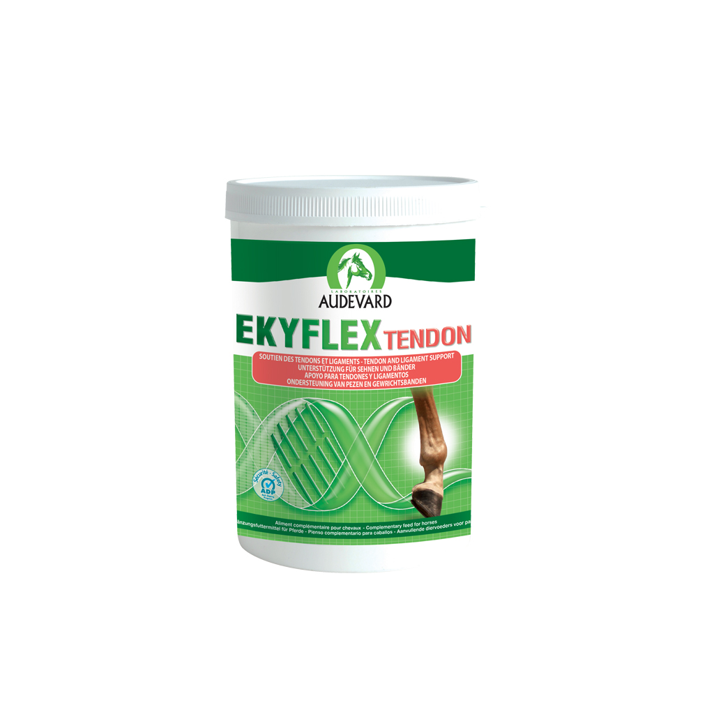 Ekyflex Tendon 600g