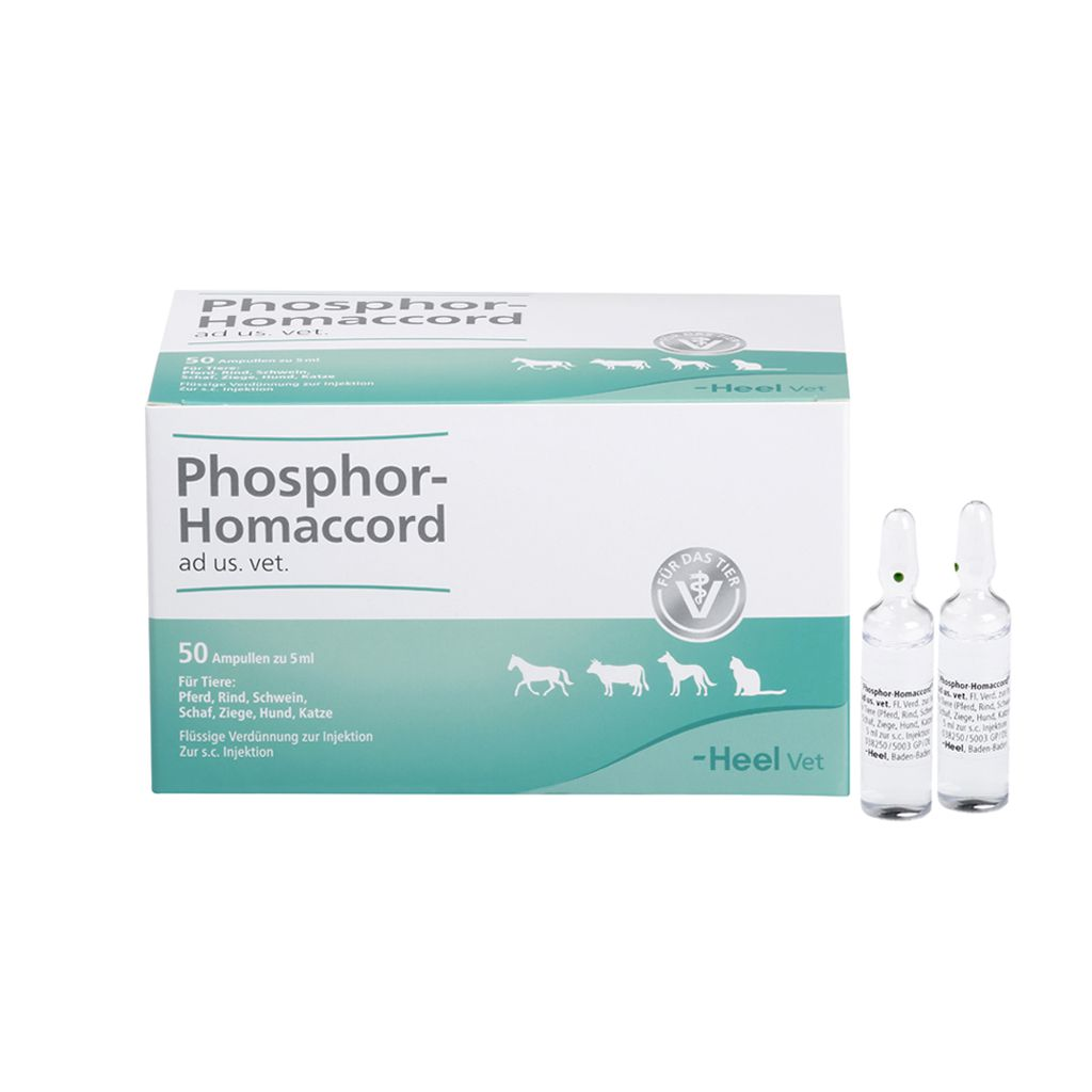Phosphor-Homaccord ad us vet 50 x 5 ml